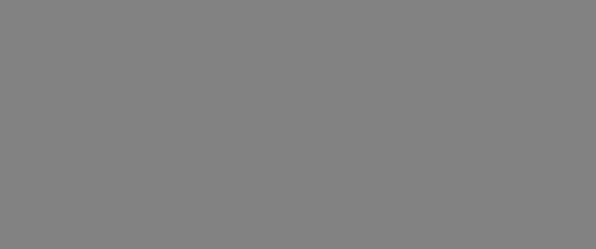 Net 360 Logo